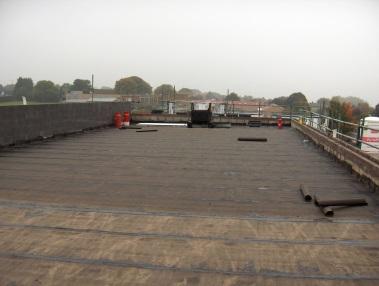 timber_deck