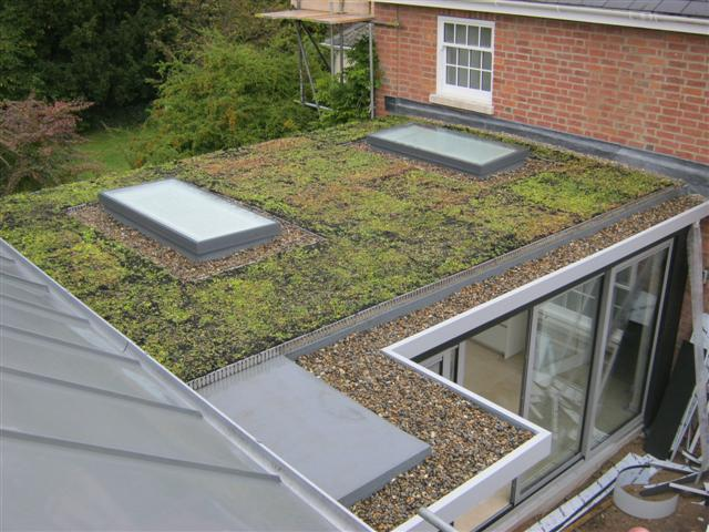 residential_green_roof